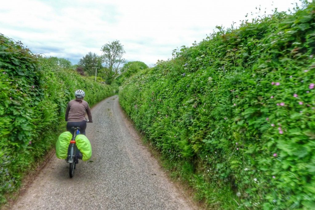 The farm roads in Wales are wide enough for one car. The tall hedgerows hide sight lines, so descending is a bit dicey.