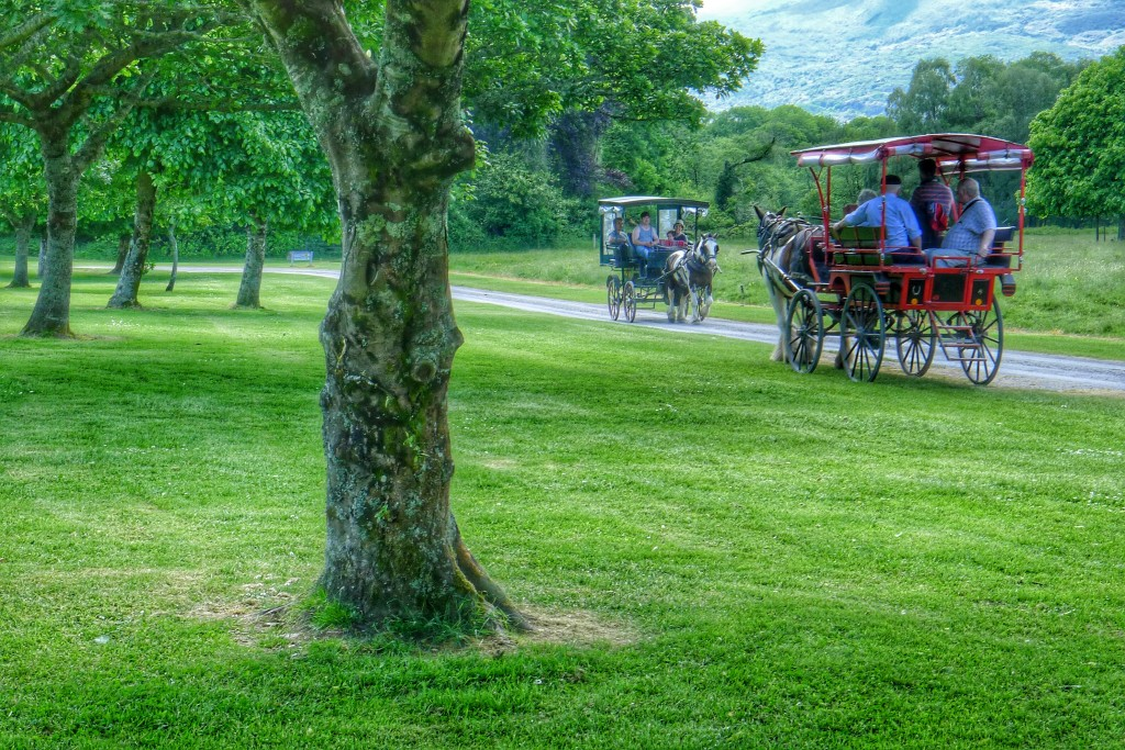 If you want an old fashioned carriage ride, killarney is the place to go.