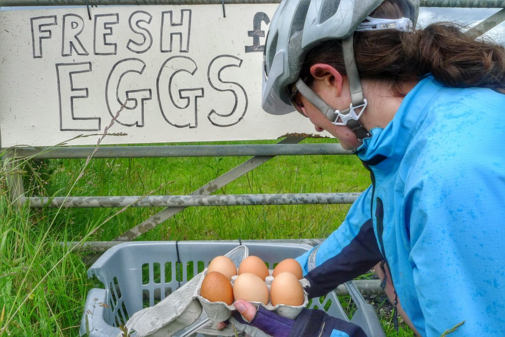 Fresh eggs from an honesty box on the side of a road.