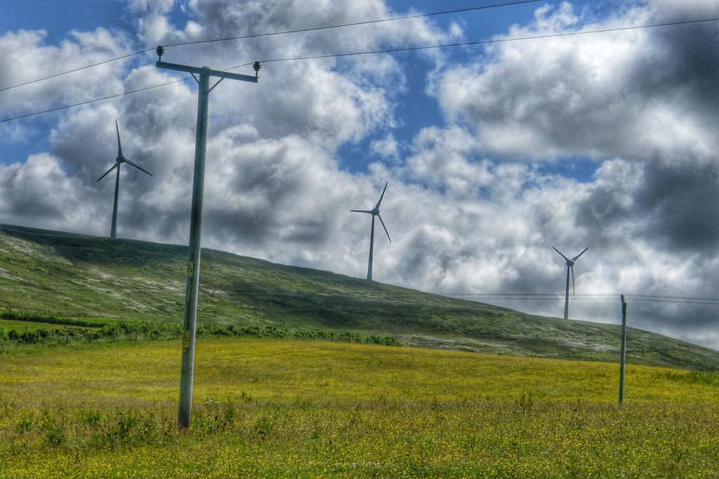 Orkney has a lot of wind turbines. Most farms have smaller turbines for home use. They're a good idea on this treeless landscape.