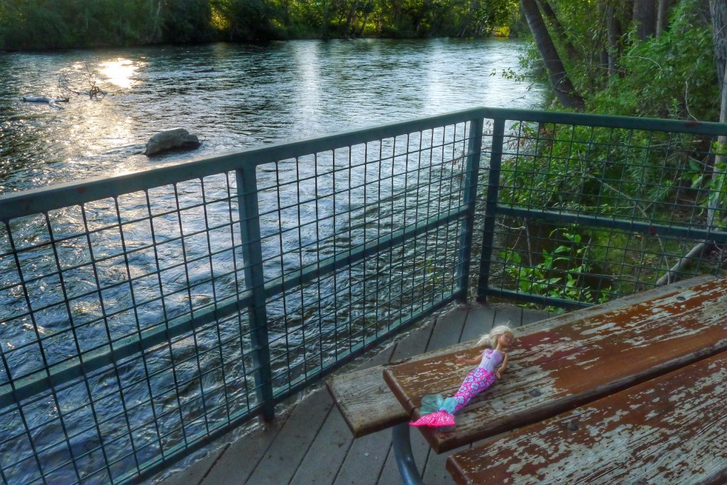 Mermaid Barbie is out of her element on a picnic bench along the Boise River.